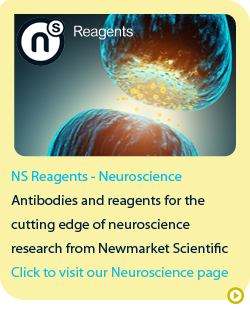 Ns reagents neuroscience
