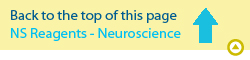 Page top neuroscience