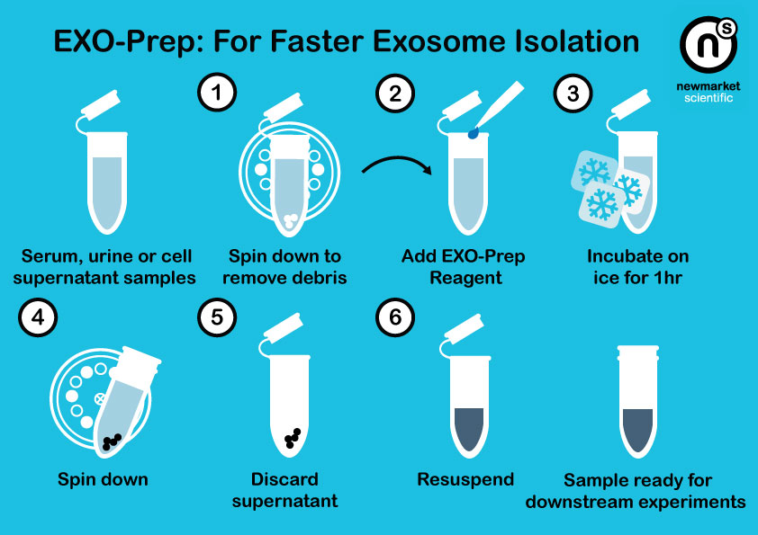EXO-Prep - Exosome Isolation